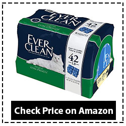 Ever Clean Extra Strength Cat Litter