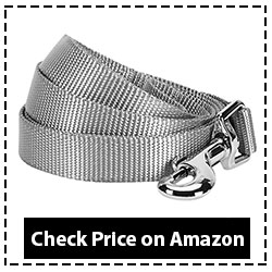 Blueberry Pet Classic Leash